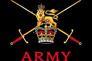 British Air Force Logo